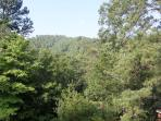 Woodhaven #1741- Outside View From the Cabin