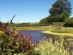 Mature gardens with wildlife ponds and nature trail