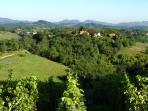 Beautiful Bednja hills covered in vineyards