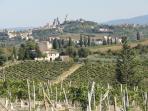San Gimignano in distance