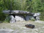 Dolmen de la Pierre Couverture - a pleasant place for a woodland picnic.