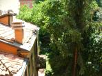 The viem of my garden from your window!!!