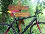 Bicicletta e targhe per escursioni indimenticabili