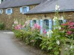 Maison Bretagne in the village.Many walks in the village, through woods along the banks of the Odet