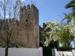 Vista del castillo desde dentro de la valla de la casa.