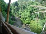 Upstream view of the Ayung river from the 2nd floor bedroom