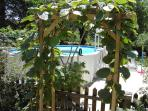 Kiwi covered archway to the pool of La Vigne