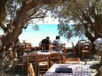beachside dining, 400m from resort