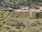 parcelas agricolas na aldeia de Bezerra