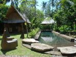Guests also have access to the communal natural pool, and kitchen (left)