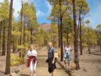 Randonné dans le parc du Teide vers le paysage lunaire