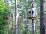 Zip Sliding at Alice Holt Forest