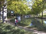 Cycling on Canal Du Midi
