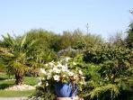 Le jardin Les gites d'amis, un jardin paysagé s'offre à vous pour vous détendre et prendre