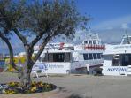 Ferries to the Neptunus Caves