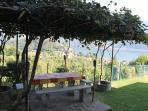 Outdoor Dining under the Vine-covered Pergola with Lake Views (with barbecue)