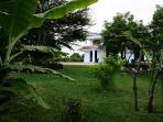 One Acre (0.4 Ha) Private Garden with fruit trees like banana, mango, citrus, and papaya trees