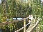Bridge to 'Willows' secluded picnic area