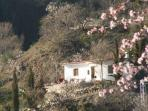 Cuesta Vinas in Springtime