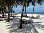 Private Beachclub