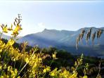 Aurunci Mountains Regional Park from Scauri's brooms
