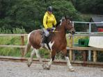 Manege hire and Riding lessons 4yrs up,Get back in the saddle