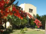 Villa Batiuska, pool, reachable, fully equipped