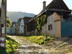 Vale, village street (Sibiu, Transylvania, Romania)