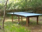 table de ping pong dans ere de jeux