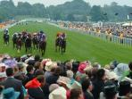 York Races - (30 minutes walk or a short drive from apartment)