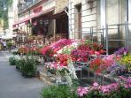 Market day Sarlat