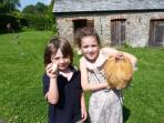 Fancy collecting the chicken eggs?