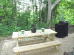 pic nic table and charcoal grill