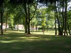 le parc arboré