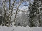 Outside the chalet in winter