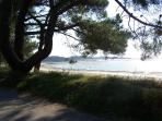 Beautiful sandy beach and shady tree's within half hours drive