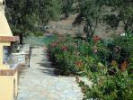 Stone-paved path leading to pool