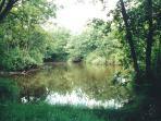 Picnic/Coarse Fishing Lake