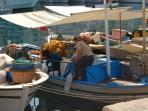 Fishing boat in Kas