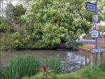 Sutton Pond