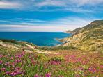 Carloforte cliffs - Le scogliere di Carloforte