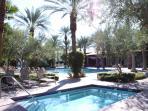 Main Clubhouse Kiddie Pool