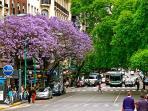 Plaza San Martín a Solo Unas Cuadras del Apartamento