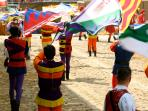 Flag Throwing at The Asti Palio