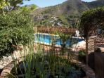 Pond and pool area, with a mountains views