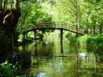 The Marais Poitevin just 45 mins drive away (Green Venice)