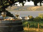 Award Winning Tamar Valley Wineries