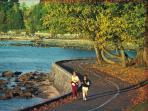 Stanley Park Seawall walk, jog or ride