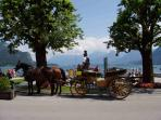 Horse and Carriage ride in the centre of St Gilgen