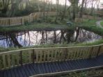 New woodland/nature walkway